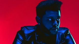 """Did The Weeknd """"Feel It Coming"""" With Selena Gomez After His Breakup With Bella Hadid?"""