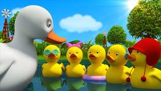 Five Little Ducks   Cartoon Nursery Rhymes For Toddlers   Kids Tv Nursery Rhymes For Children