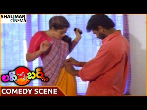 Xxx Mp4 Love Birds Movie Prabhu Deva Wearing Saree To Nagma Prabhu Deva Nagma Shalimarcinema 3gp Sex