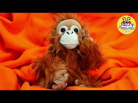 I Love You Dad Song with Very Cute Orangutan