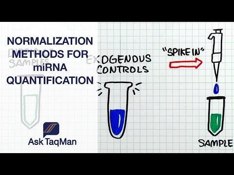 Normalization Methods of miRNA Quantification - Ask TaqMan #40