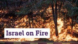 Israel on Fire