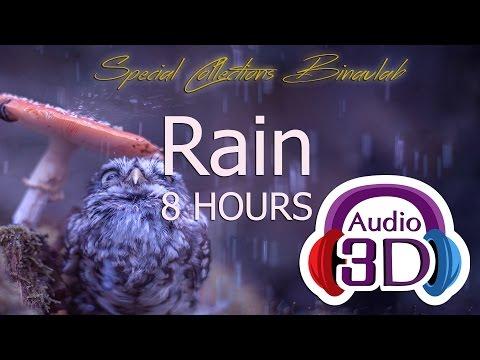 CHUVA 8 HORAS - AUDIO 3D - GRAVAÇÃO ORIGINAL - BINAURAL
