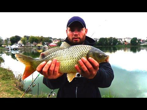 рыбалка карп осень видео