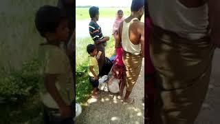 MAYENMAR ROHINGA POSS ING BANGLADESH(2)
