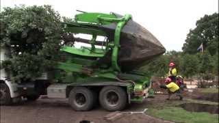 Máquina de plantar, remover e replantar árvores - Incrível