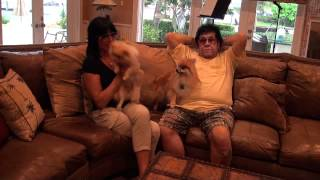 "Debbie Knight Lady E ""Kiki"" The Hyper Pomeranian ""Female Elvis"" Droning On And On"