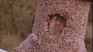 Chris Pontius as Human Cat Scratching Post - Wildboyz