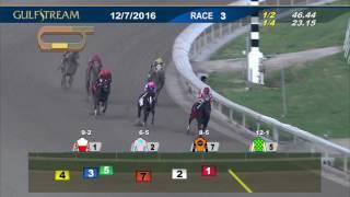 Gulfstream Park Race 3 | December 7, 2016