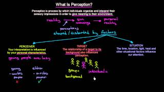 What is Perception   Organisational Behavior   MeanThat