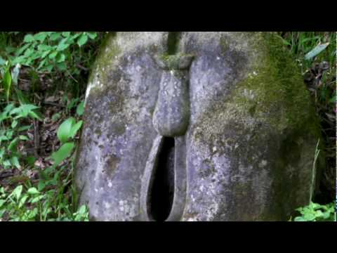 Xxx Mp4 2010610 3gp Sex