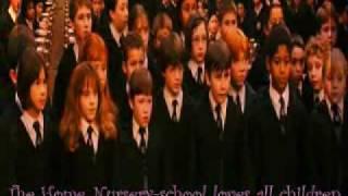 Harry Potter: PolishHarryPowned - CRACK (POLSKI)