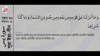 036 Surah Ya Sin with bangla translation   recited by mishari al afasy