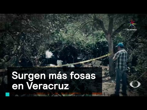 Surgen más fosas en Veracruz - Inseguridad - Denise Maerker 10 en punto -