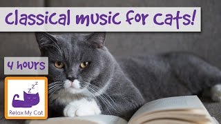 2 Hour Cat Music Playlist, Four Hours of Classical and Instrumental Music for Cats and Kittens