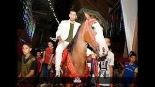 عريس طلع عى المسرح بالحصان لى حماده محرم ي خرابى العالمى لتنيظم الحفلات