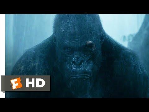 Xxx Mp4 The Legend Of Tarzan 2016 Rescuing Akut Scene 6 9 Movieclips 3gp Sex