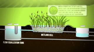 Eco-Friendly Wastewater Treatment System