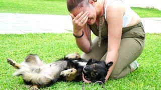 GIRL AND DOG REUNITED AFTER HER STEPFATHER DUMPED HIM IN A LANDFILL! INCREDIBLY MOVING!