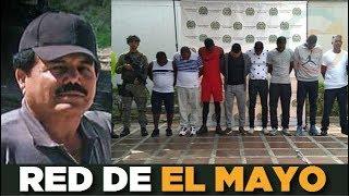 """Desarticulan red de narcotráfico ligada a """"El Mayo Zambada"""" en Colombia"""