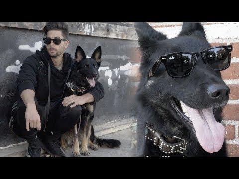 Xxx Mp4 I GOT A DOG 3gp Sex