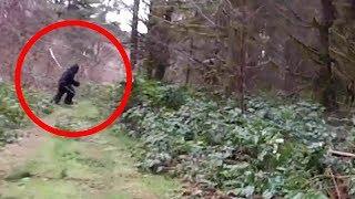10 Real Bigfoot Sightings Caught on Tape
