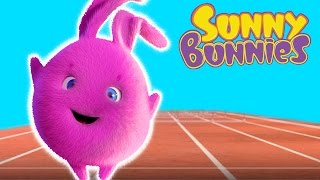 Cartoon ★ Sunny Bunnies - Who is Faster? ★ Funny Cartoons for Children