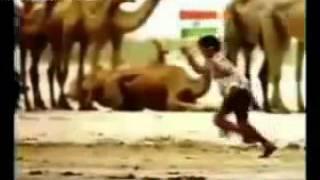 A R RAHMAN tamila tamila