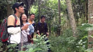 5 Mm (Parodi Film 5 Cm by KKNM Unpad Desa Nangelasari, Cipatujah, Tasikmalaya)
