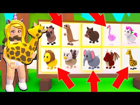 Buying ALL The NEW SAFARI PETS In Adopt Me Roblox