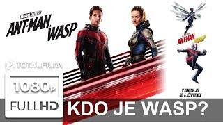 Ant Man a Wasp (2018) film o filmu - KDO JE WASP?