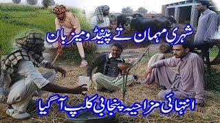 new funny punjabi clip shehri mehman tay pendu mezban
