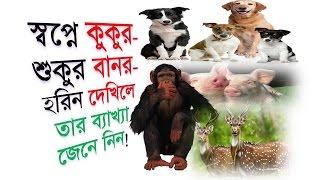 স্বপ্নে কুকুর শুকুর বানর হরিন দেখিলে তার ব্যাখ্যা জেনে নিন Shopner Tabir Shopner Bekkha