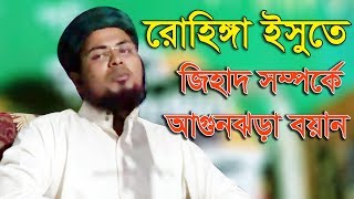 Bangla Waz 2017 Maulana Delwar Hossain Taherpuri About Rohingya Issu About Jihad