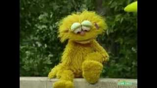 Sesame Street - Big Bird and Zoe - Same and Different