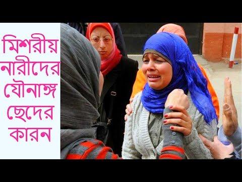 Xxx Mp4 মিশরীয় নারীদের যৌনাঙ্গ ছেদের কারন BypasWay 3gp Sex