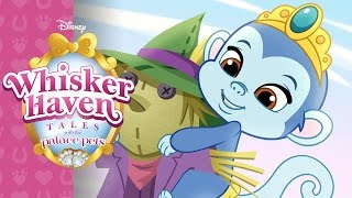 Whisker Haven Buddies Day   Whisker Haven Tales with the Palace Pets   Disney Junior