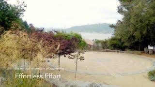 Effortless Effort | satsang on spiritual awakening | Jon Bernie