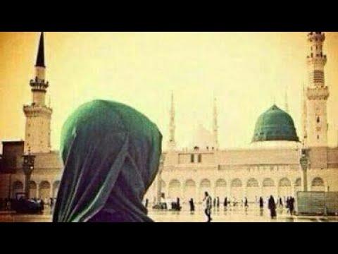 Best Islamic WhatsApp status|Ya nabi salam alayka|Ringtone|Aqsa Abdul haqq.