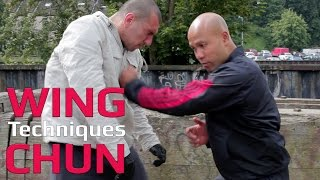 how to use wing chun chain punch for self defense