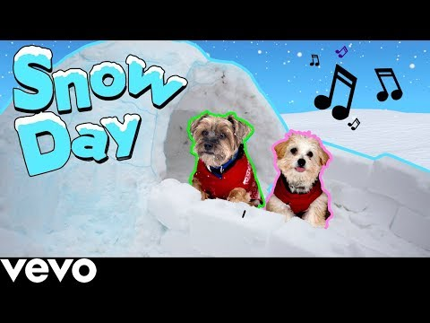 Xxx Mp4 SNOW DAY Official Puppy Music Video 3gp Sex