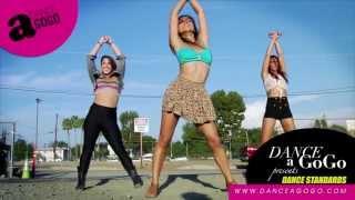 Dagg Dance Standard  Jai Ho  Pussycat Dolls  Pcd