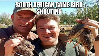wing-shooting game bird hunting shooting Safaris South Africa 2019 £175 per person