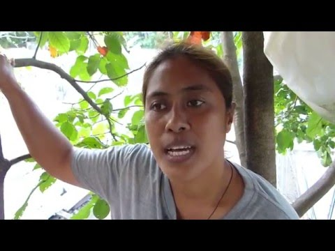 BIRD LADY LIVES IN TREE WITH 57 LOVEBIRDS LIFESTYLE. CEBU PHILIPPINES