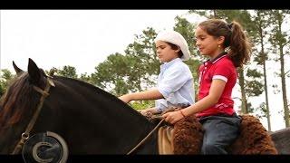 Uma infância feliz ao lado do cavalo