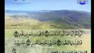 سورة الواقعة بصوت مشارى بن راشد العفاسى