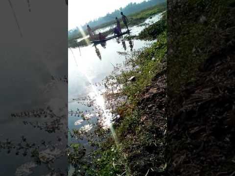 Bangla Kochi Kochi mal Na dekle miss