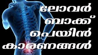Lower Back pain കാരണങ്ങൾ 2 | Dr  Ajith Kumar | Arogyavicharam 19