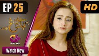 Is Chand Pe Dagh Nahin - Episode 25 | Aplus ᴴᴰ Dramas | Zarnish , Firdous Jamal | Pakistani Drama