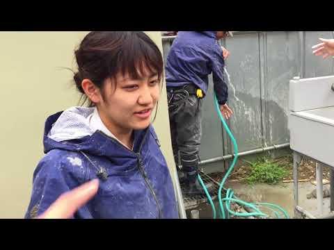 Xxx Mp4 VLOG Cuộc Sống Nhật Bản 99 Một Ngày Làm Việc Của Nữ Kỹ Sư Người Nhật Không Phân Biệt Nam Nữ 3gp Sex